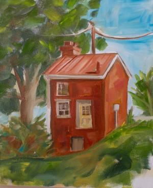 Small-house-Lexingto-by-Carolina