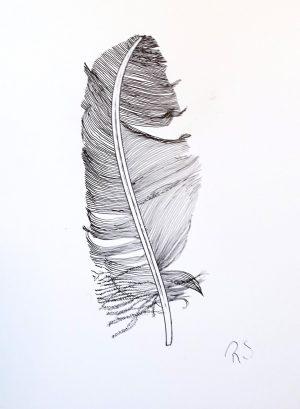 Bob's feather